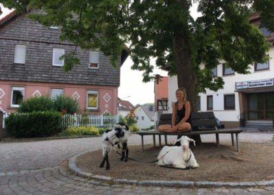 Flecki Ringelohr und Sami als Attraktion am Dorfplatz auf der Neunkirchner Höhe