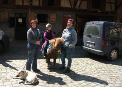 Pony vor dem Pferdestall