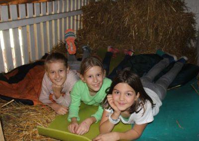 Ziegennachtlager
